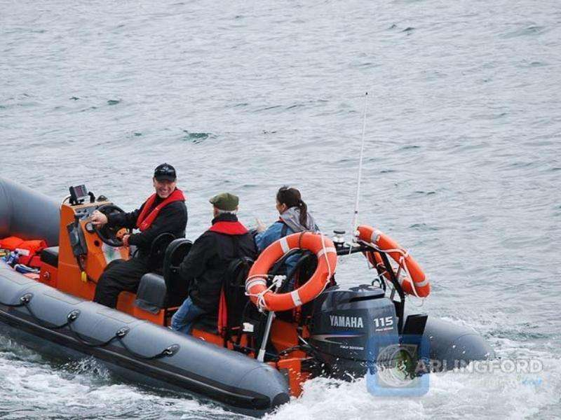 Boat-Trip-Carlingford-Lough-Boating-Trips-4
