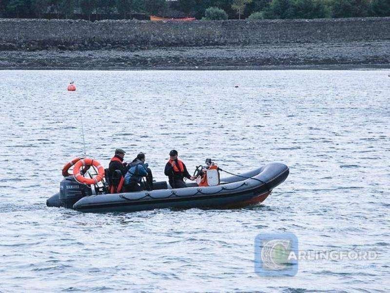 Boat-Trip-Carlingford-Lough-Boating-Trips-8