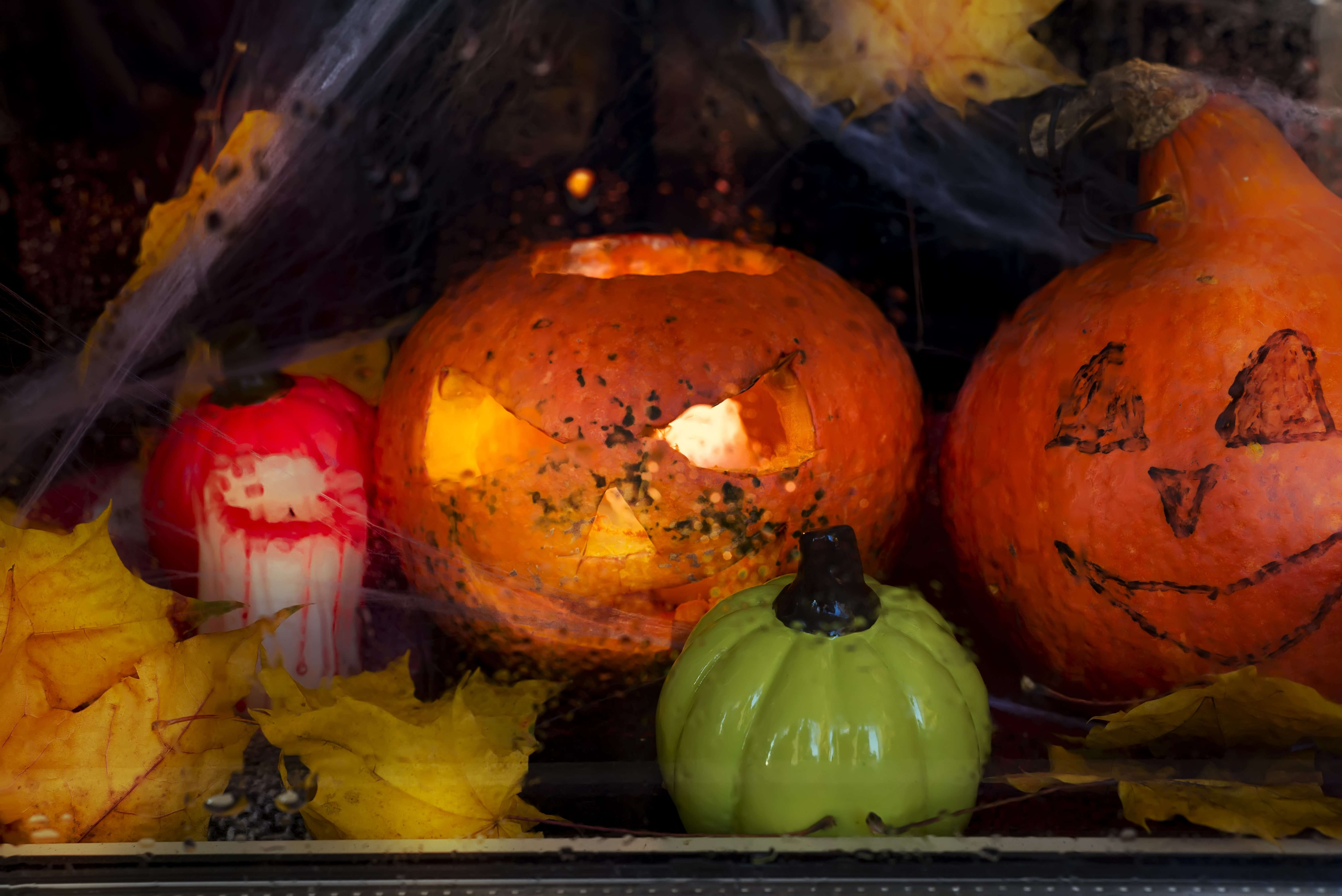 Halloween - pumpkins, candles and web on leaves and logs with a warm and cold glow, against the background of a window with cobwebs, with the inscription of happy halloween